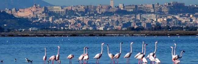 Города Сардинии: Кальяри