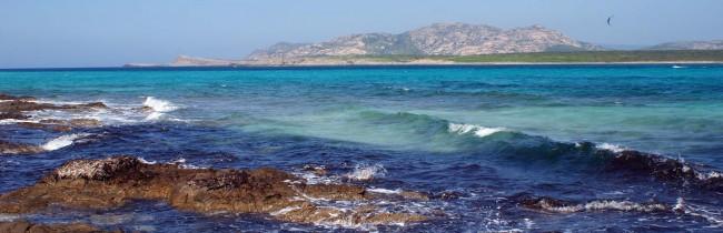 Остров Азинара, Сардиния